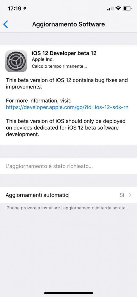 Beta Developer 12